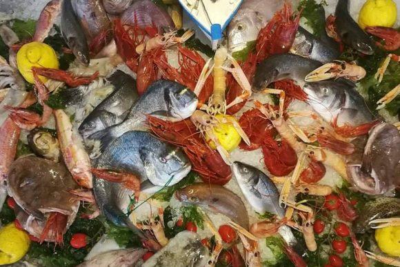 la paranza con il pesce del golfo
