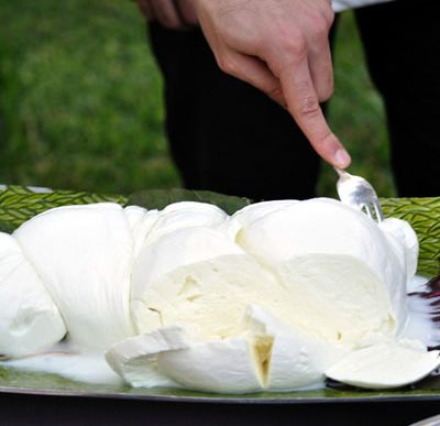il fior di latte della penisola sorrentina è uno degli ingredienti principali del Saltimbocca di Vico Equense